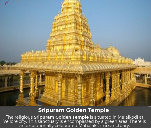 sripuram golden temple history, sripuram golden temple timings, sripuram golden temple images,sripuram golden temple accommodation, sripuram golden temple to tirupati distance, sripuram golden temple nearest railway station, golden temple vellore how much gold used, how to reach golden temple vellore